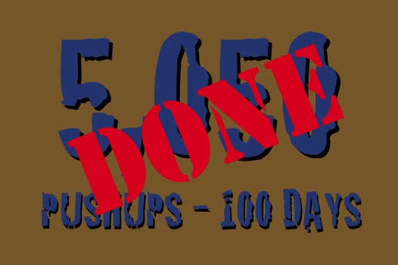 Completed A 100-Day Pushup Challenge 69/366)